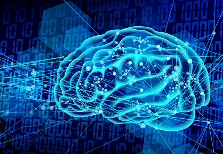 IT×脳科学